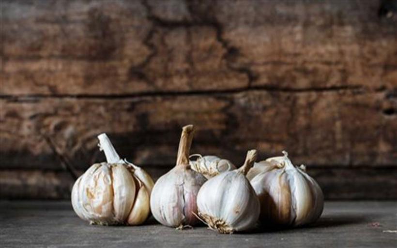 Συστατικό του σκόρδου καταπολεμά τις βακτηριακές λοιμώξεις