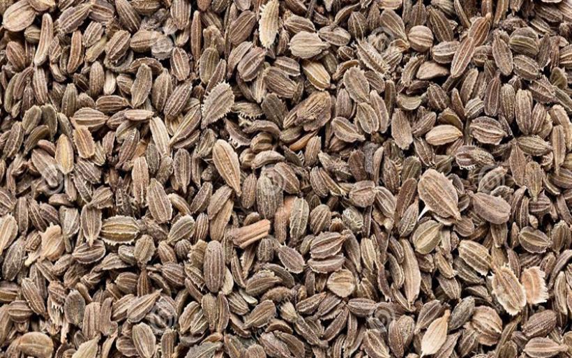Δέματα με ύποπτους σπόρους αποστέλλονται στη Μαγνησία από Τρίτες Χώρες