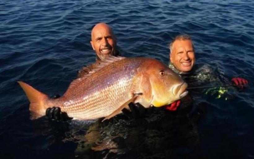 Παγκόσμιο ρεκόρ: «Χτύπησε» συναγρίδα 11 κιλών με ψαροντούφεκο