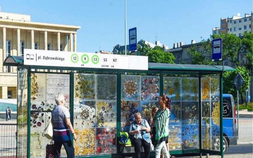 Πολωνία: Καλλιτέχνις μετέτρεψε στάση τραμ σε μουσείο λουλουδιών