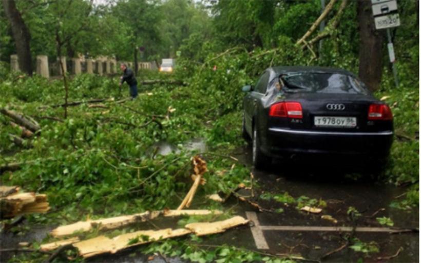Καταστροφική κακοκαιρία στη Μόσχα: Σκοτώθηκαν άνθρωποι, ξεριζώθηκαν δέντρα