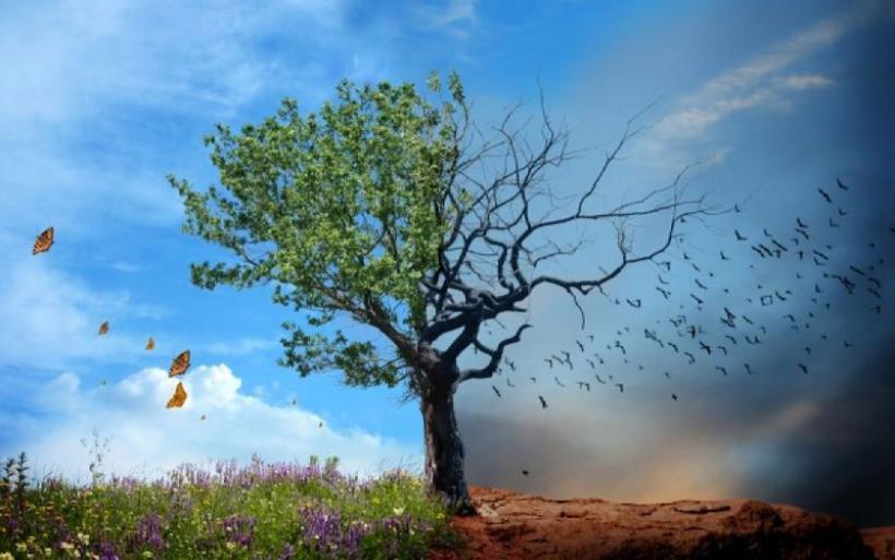 Η κλιματική αλλαγή αντικείμενο ημερίδας της ΠΕΔ Θεσσαλίας στον Βόλο