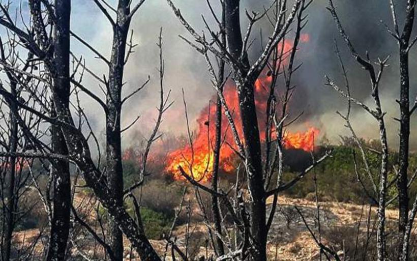 54 φωτιές σε ένα 24ωρο σε όλη την Ελλάδα- Υψηλός ο κίνδυνος πυρκαγιάς και σήμερα