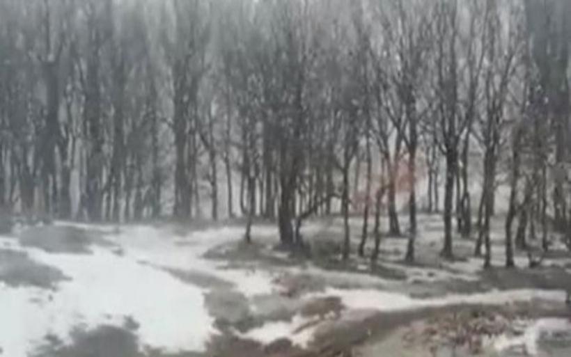 Τρίκαλα: Χιονίζει και πάλι στα ορεινά
