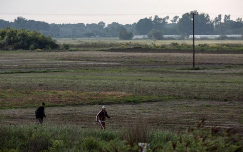 Εύβοια : Βρέθηκε ανθρώπινος σκελετός σε χωράφι
