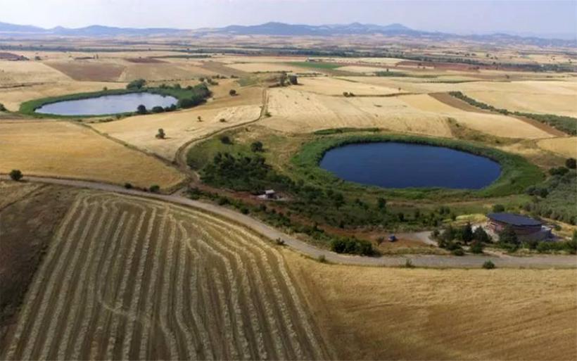 Από το 6.600 π.Χ. οι πρώτοι γεωργοί στον Αλμυρό – Νέα ανασκαφικά ευρήματα στα Ζερέλια