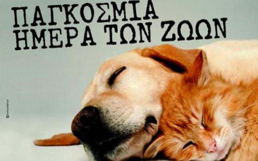 Παγκόσμια ημέρα ζώων σήμερα Παρασκευή 4 Οκτωβρίου