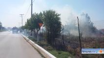Άμεση επέμβαση της Πυροσβεστικής σε φωτιά ανάμεσα σε Αλμυρό και Ευξεινούπολη (βίντεο&φωτο)